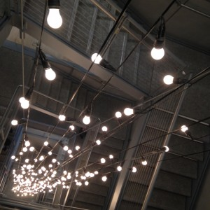 lights at the whitney